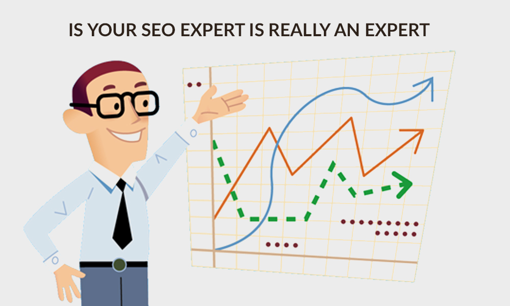 Is Your SEO Service Provider Really an Expert?