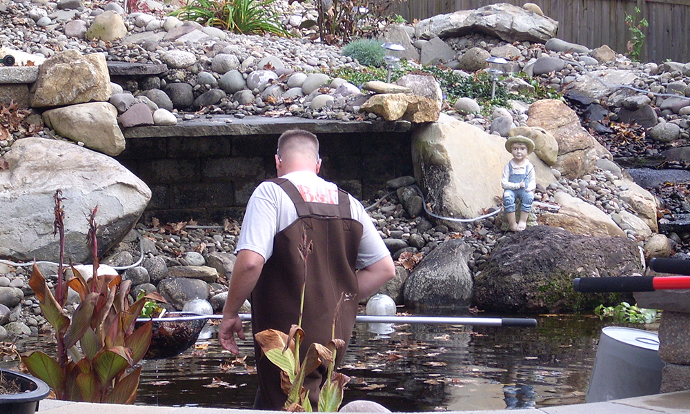 Availability of Ultimate Pond Cleaning Services in Melbourne