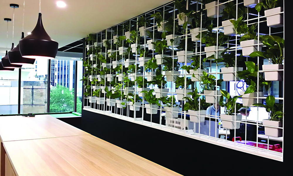 A Softer and Delicate Touch to Workplace, Plant Hires