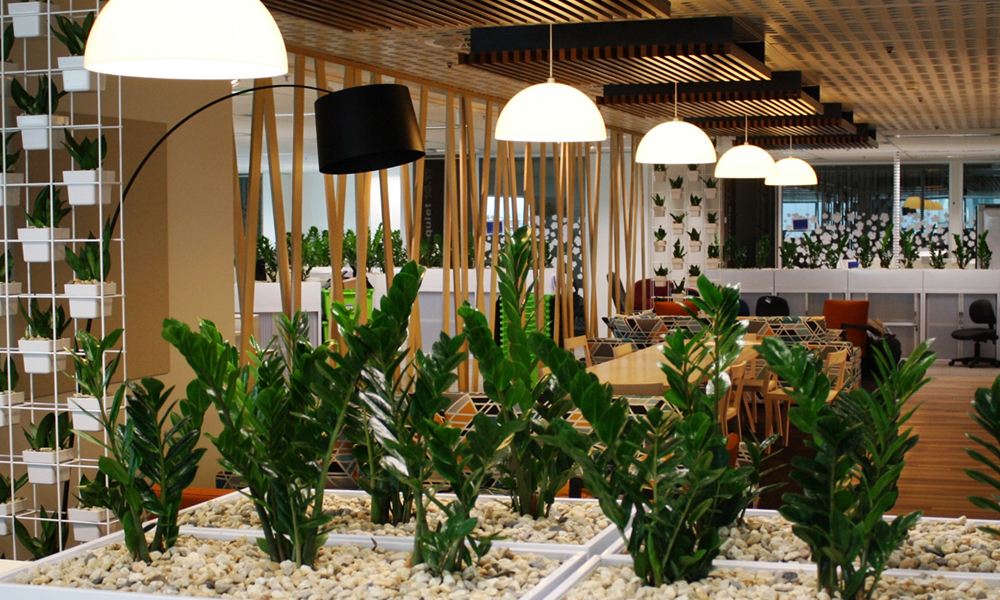 Return to Nature with Indoor Plants