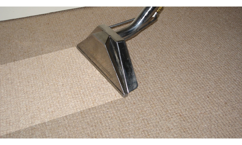 Cleaning Myths About Wet Carpets