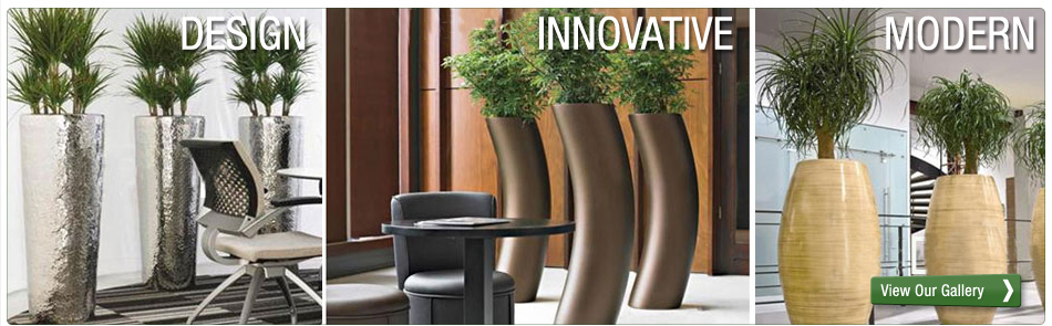 Indoor Plants For Your Offices With Melbourne Plant Hire