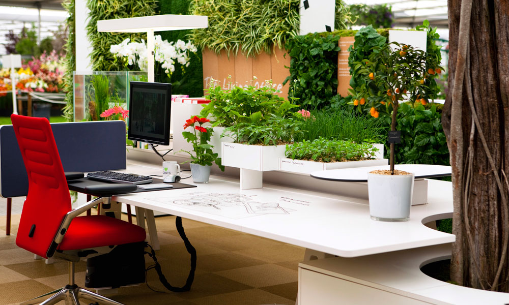 Hire Office For Green And Clean Work Environment