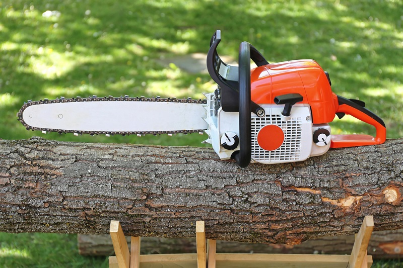 Tree Removal Services: Using the Best Techniques