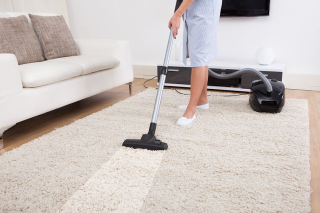 professionla carpet cleaning