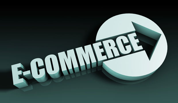 How to Use Ecommerce and Website Development Services for Enhanced Business Growth
