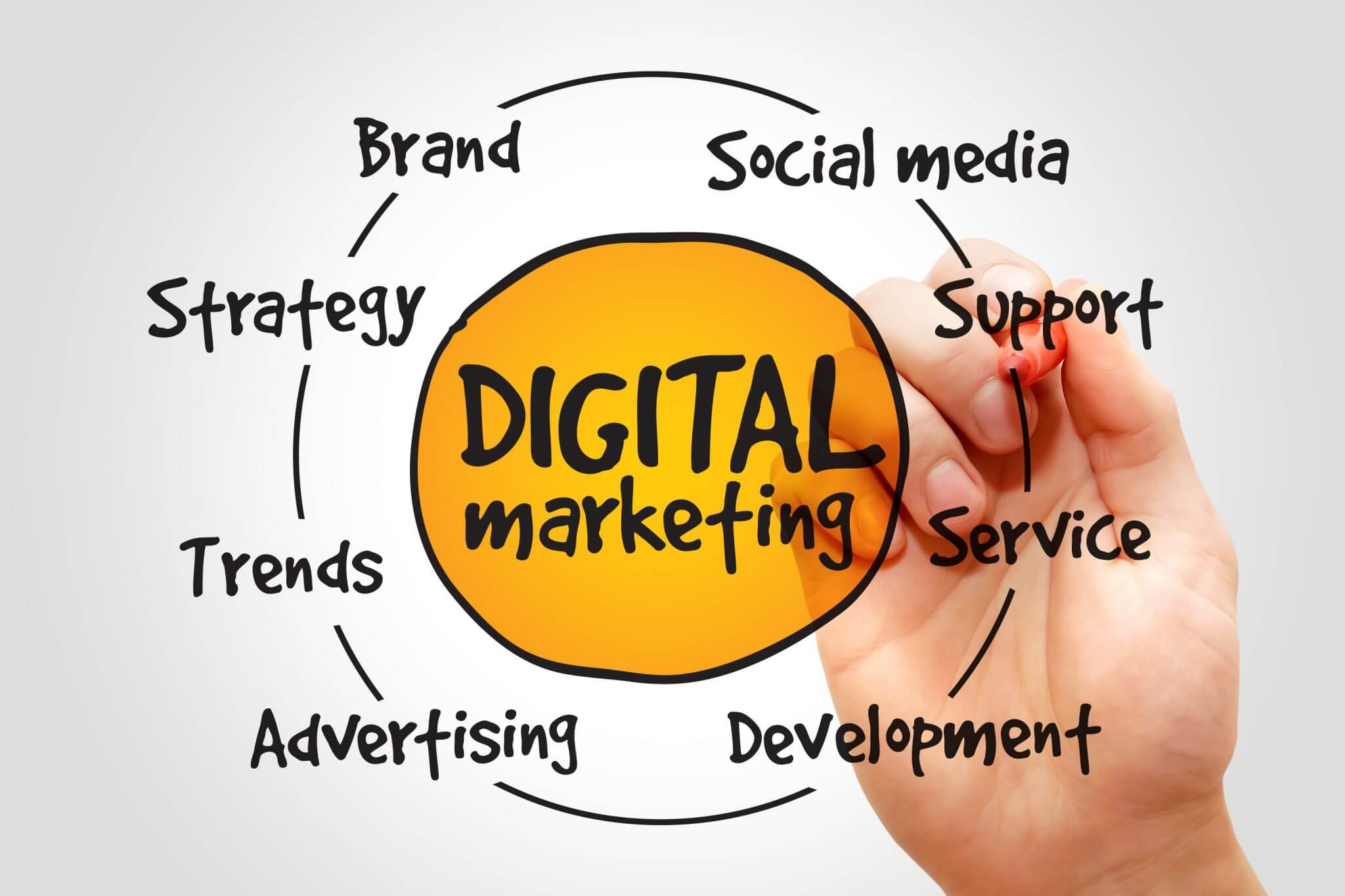 The Emergence of the Digital Marketing Service Provider