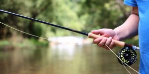 best-fly-rods