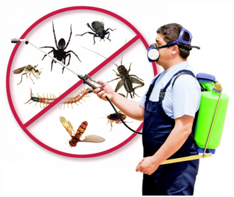 Pest Control Must Be Part of our Healthy Lifestyle Regimen