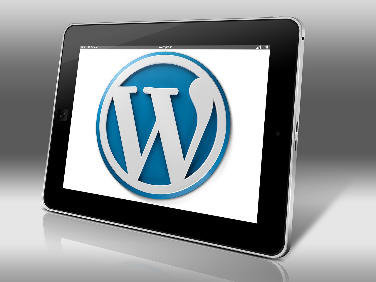 WordPress Hosting Guide: Types And How To Choose