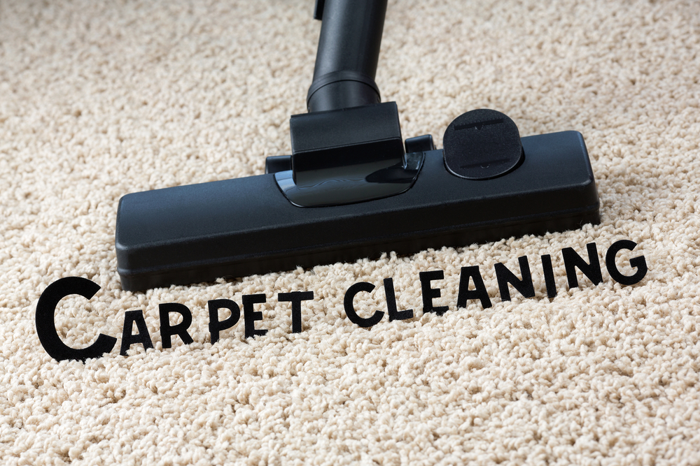 Get Exclusive Cleaning Solutions for Carpet Cleaning