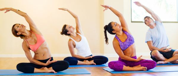What are Five Principles for the Practice of Yoga?