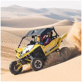 Advantage of the Lifetime Buggy Experience in Dubai