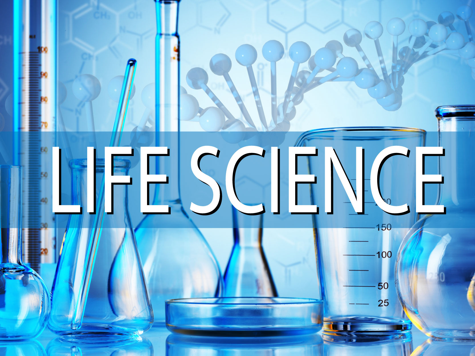 How To Empower Your Career Through Life Science?