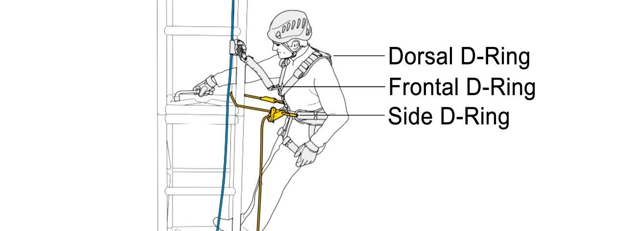 Point Harness