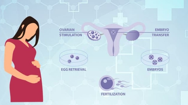 What Does IVF Treatment Cost in Bangalore?