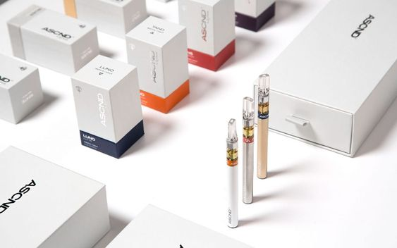 Everything You Need to Know About Vaping and its Flavors