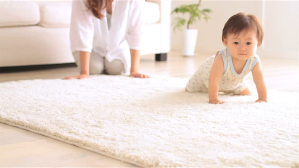 Professional Carpet Cleaning Services in Sydney
