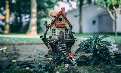 brown-and-red-birdhouse-2640604