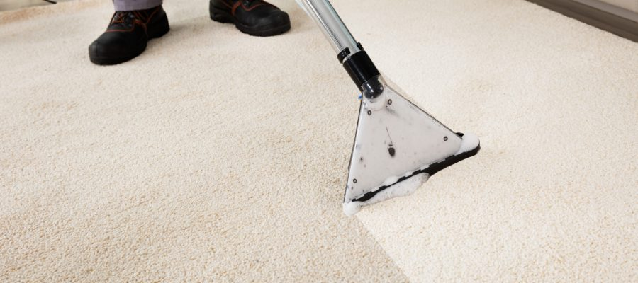 Determine 3 Ways to Take the Carpet Cleaning Business to Next Level