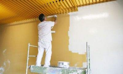 Best Painting Services Pearland TX