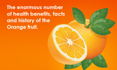The enormous number of health benefits, facts, and history of the orange fruit.