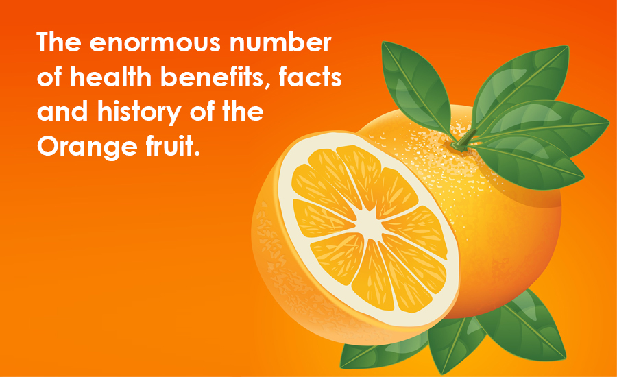 The Enormous Number of Health Benefits, Facts, and History of the Orange Fruit