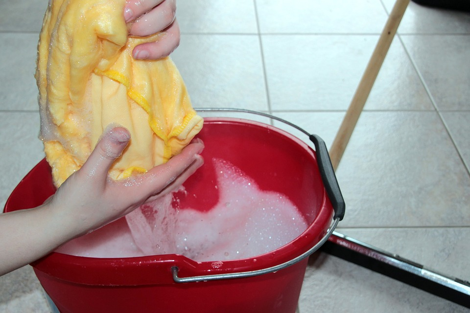 Have A Spotless Pet Home: Follow This 6 Cleaning Tips