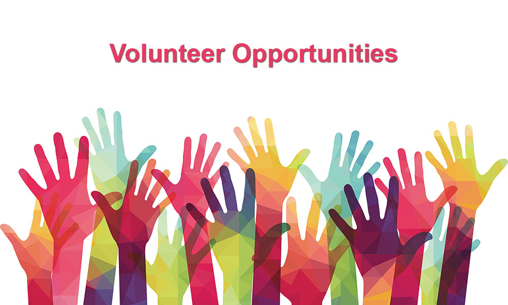 12 Volunteer Opportunities For Teens In 2020
