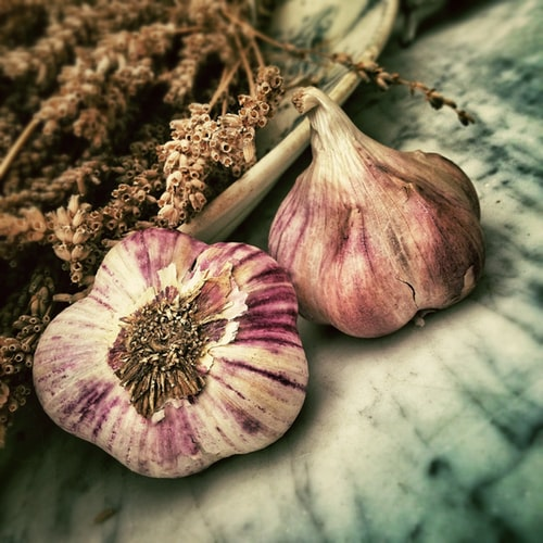 16 Effective Benefits of Garlic