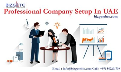 Professional Company Setup In UAE