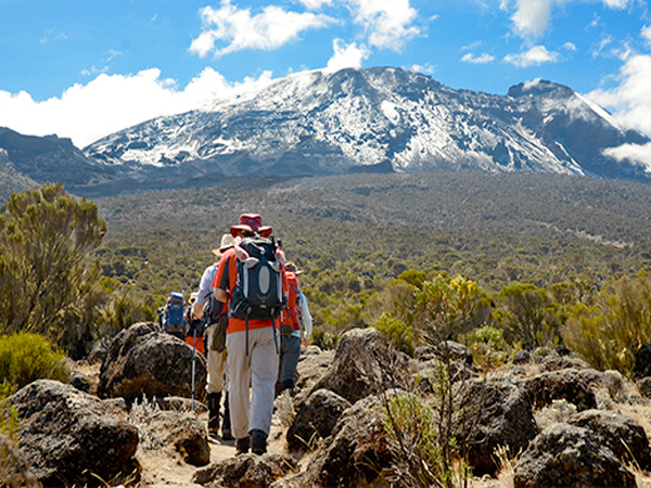Mount Kilimanjaro – The Trekker's Dream Summit