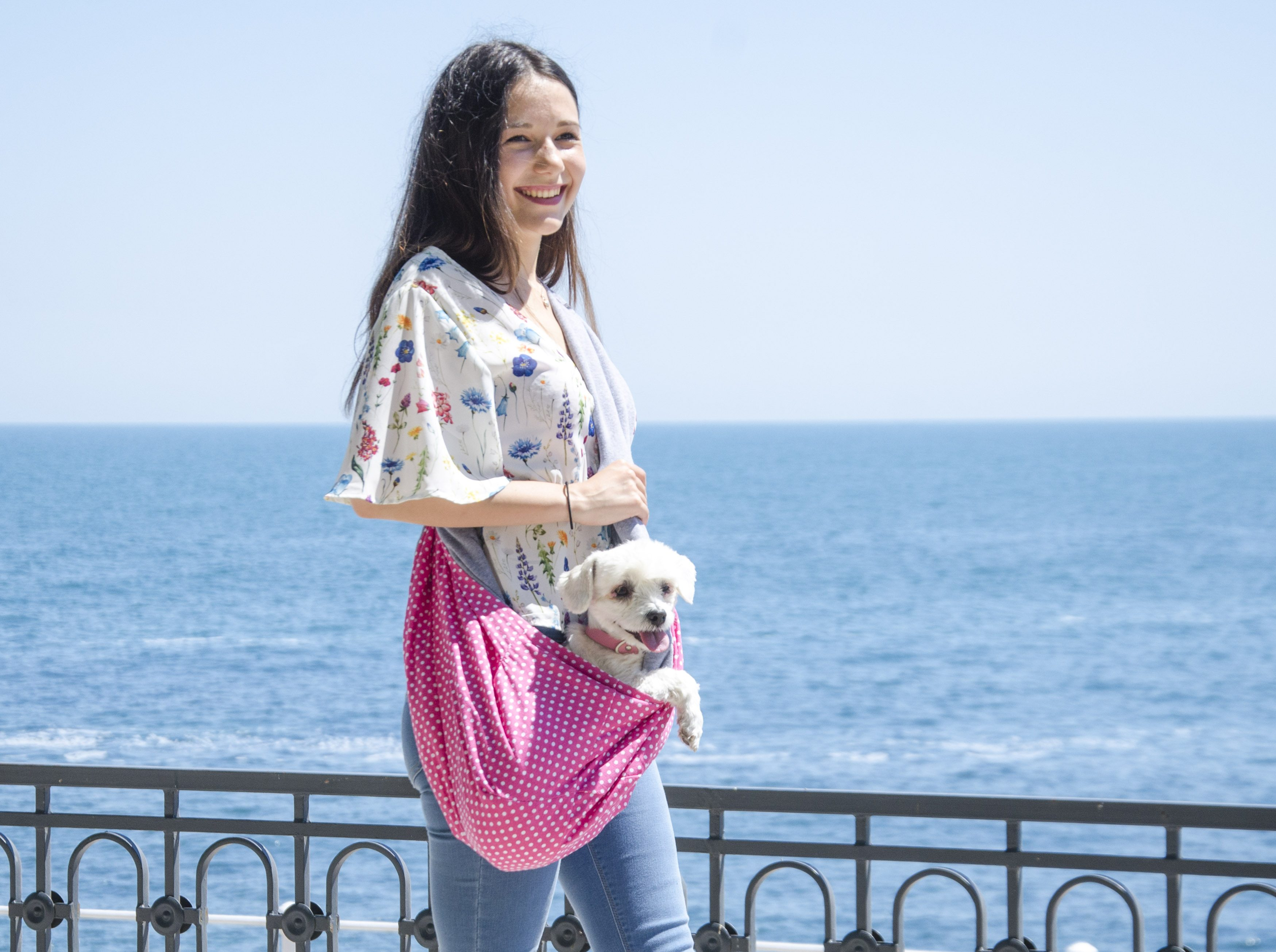 Why you Need a Good Dog Sling Carrier?