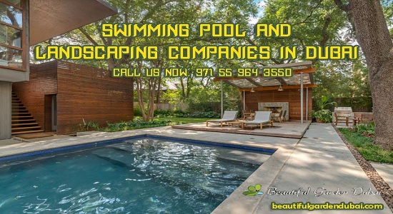 How To Pick A Perfect Pool Cleaner For Your Pool?