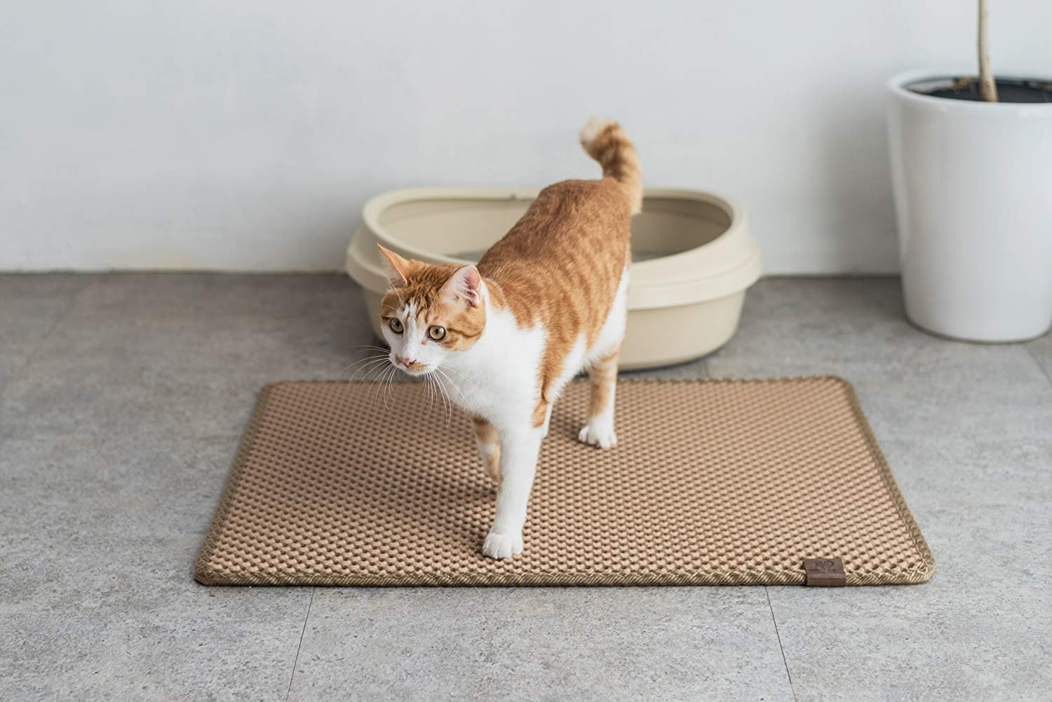 Find The Best Litter Trapper Mat For Your Kitty