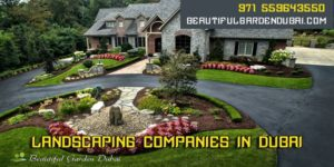 swimming pool and landscaping companies in dubai