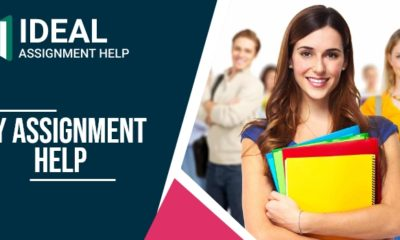 My Assignment Help 6